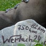24 Stunden Wanderung – Wertach 24 – (3) – Pfüati Wertach