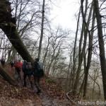 Alb 24 Winter 2014 - im Wald gibt es Riesen ;-)