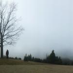 Alb 24 Winter 2014 - Panorama