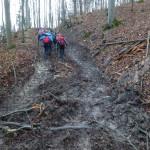 Alb 24 Winter 2014 - im Matsche zu Berge sie ziehen ..