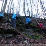 Alb 24 Winter 2014 - ein kleiner Steig