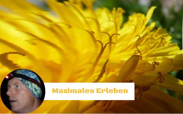 Maximales Erleben im JETZT - Magnus Bühl