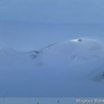 Pitztaler Gletscher im Sturm (kein Nebel)