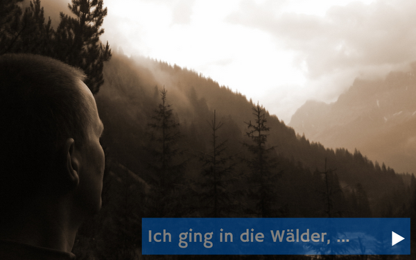 Ich ging in die Wälder,