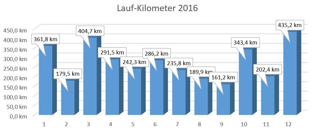 Laufkilometer2016 - Magnus Bühl