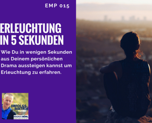 EMP015 Erleuchtung in 5 sec